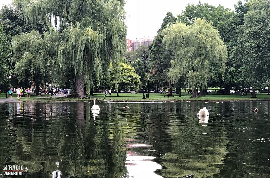 Boston have the oldest public park in the USA. It's called Boston Common and was established in 1634.